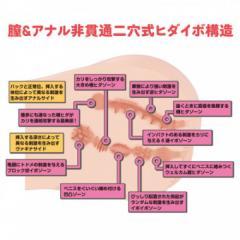 アダルトグッズ、リアルボディ+3Dボーンシステム Dカップ姉川ゆらの見本画像6