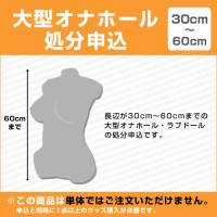 [30~60cm]大型オナホール処分申込